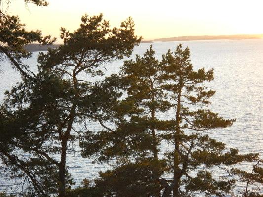 på sommaren - Utsikt mot havet