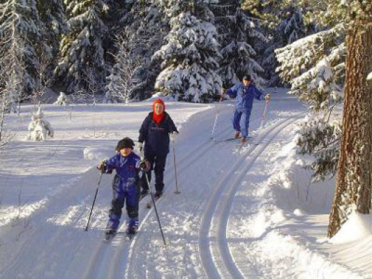 Other - cross-country skiing