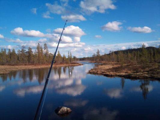 Övrig - fiske