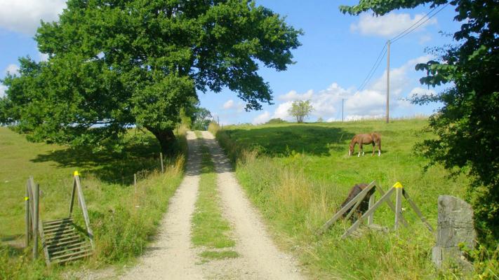 på sommaren - Härliga strövområden utan restriktioner. Upptäck naturen och friheten.