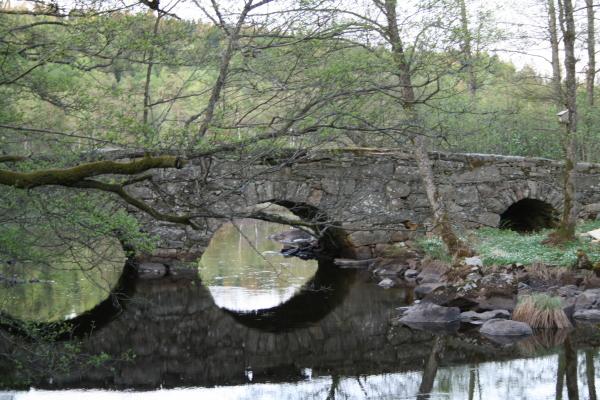 Omgivning - Den gamla bron från svunna tider