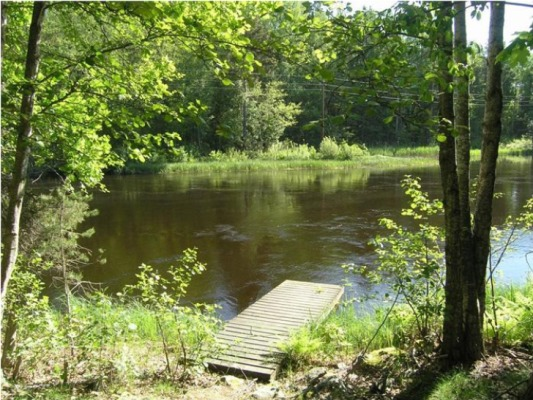Ansicht Sommer - Unser Steg direkt hinter dem Haus am Fluss