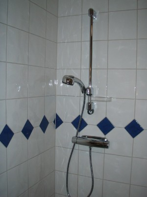 bath room - Shower in Servicehouse