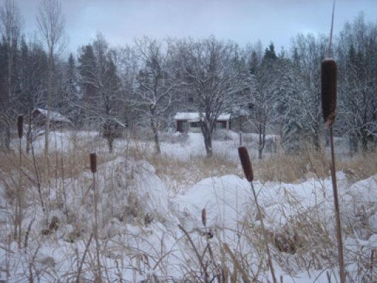 Övrig - stugan på vintern