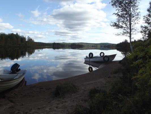 Omgivning - Håensjön mot Söder höstbild