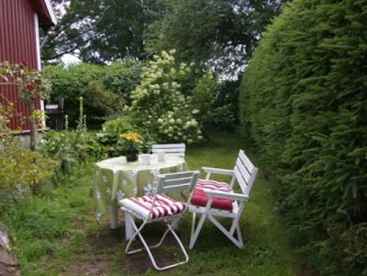 Terrass - Uteplats i trädgården
