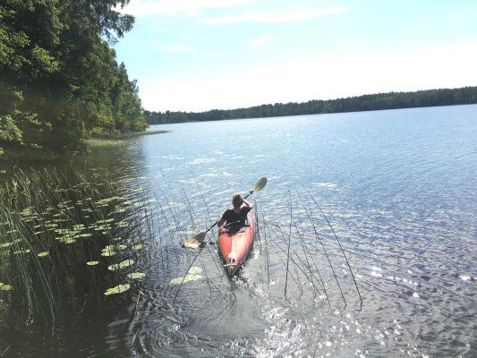 Ansicht Sommer - Uppsala-Siggeforasjön