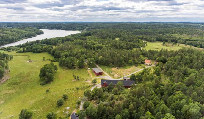 på sommaren - Häradssätter Gård med omgivande skog, sjö och betesmarker.