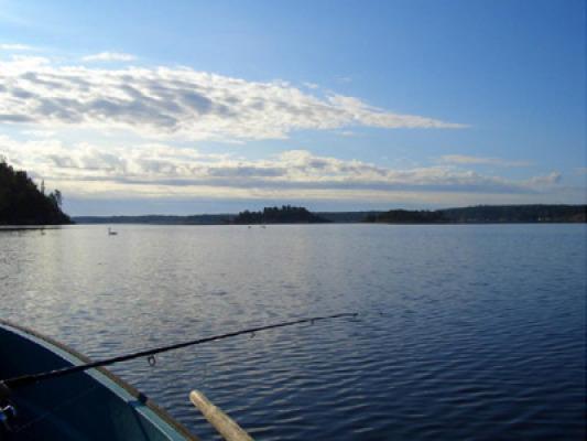 Övrig - Fisketur på sjön