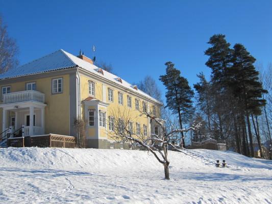 På vintern - tomten i vinter
