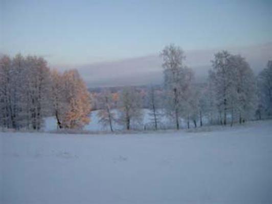 På vintern - Härlig natur på vintern