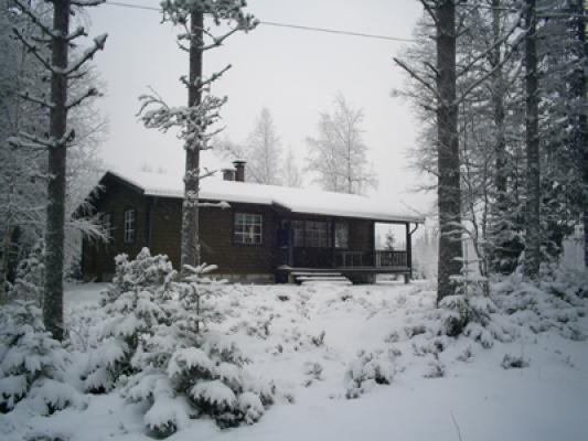 På vintern - stugan på vintern