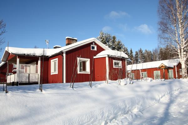 På vintern - njut av den härliga vinter i Lappland