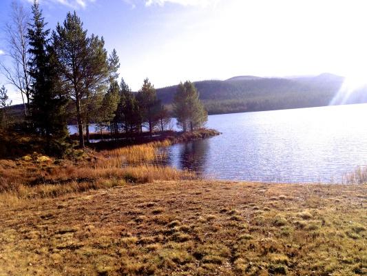 View summer - vid vattnet