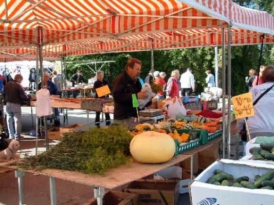 Omgivning - Augusti marknad i Rydsnäs