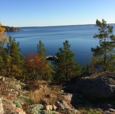Other - Muskö Snappudd