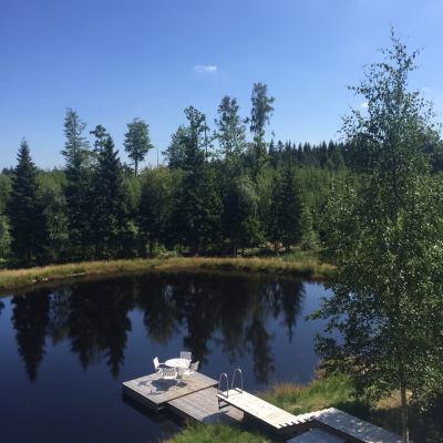 På sommaren - Vacker damm