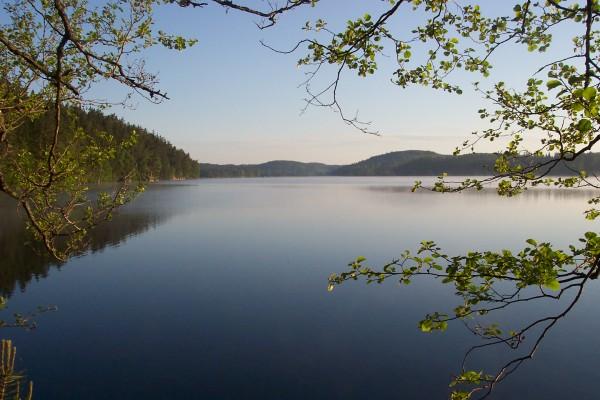 på sommaren - Sjön Tången med badbrygga och båt