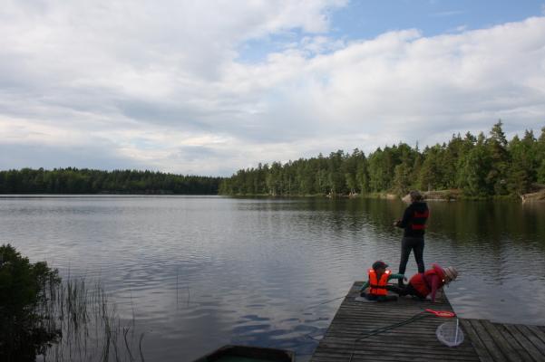 Övrig - Fiska i sjön!