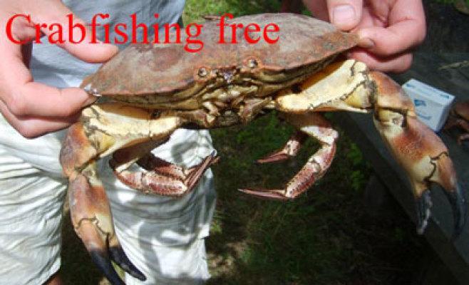 på sommaren - krabbfiske... Det finns gott om stora krabbor. Utrustning kan lånas