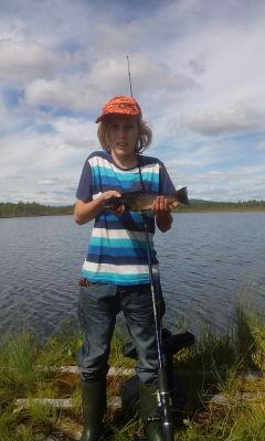 på sommaren - En god Öring till middag från en av alla de Jämtländska fiskevattnen.