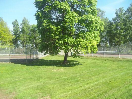 På sommaren - Fem minuters promenad kommer man till Södergarn som har ytor för lek, bad och tennis.