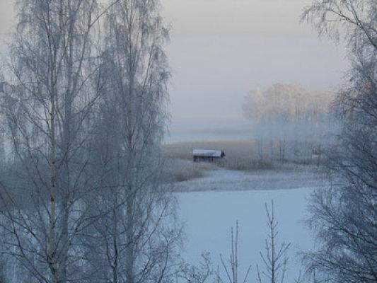 Övrig - på vintern