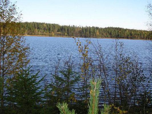 på sommaren - Sjön på sommaren