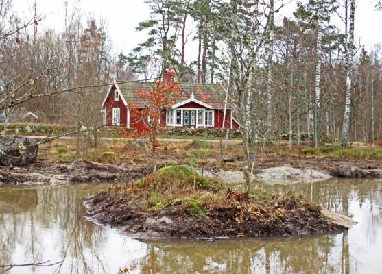 på vintern - Skogshäll