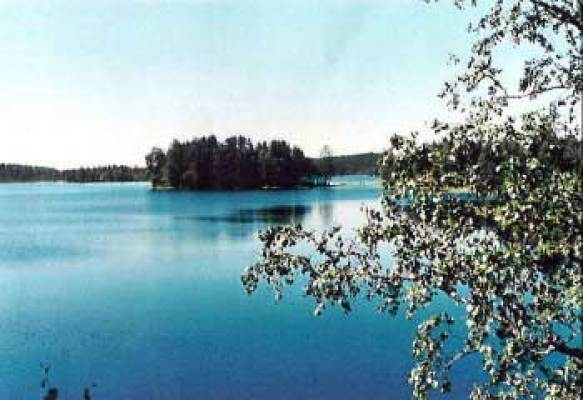 på sommaren - nära sjö