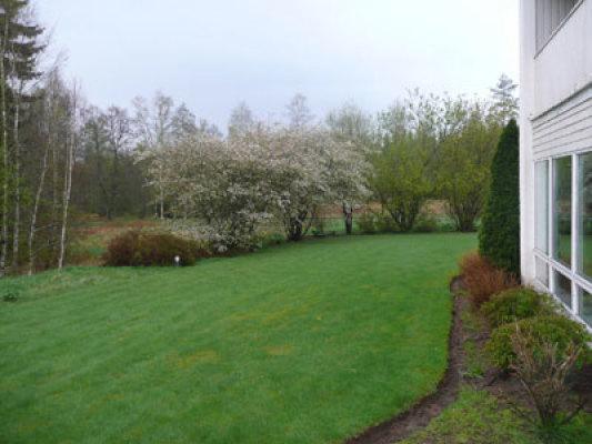 på vintern - del av trädgården