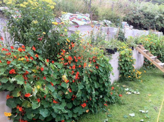 """Utomhus - Baksidan av huset vetter mot sluttning som kallas """"Backafall"""". Vår del är formgiven som en hängande trädgård."""