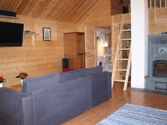 Living room - living area