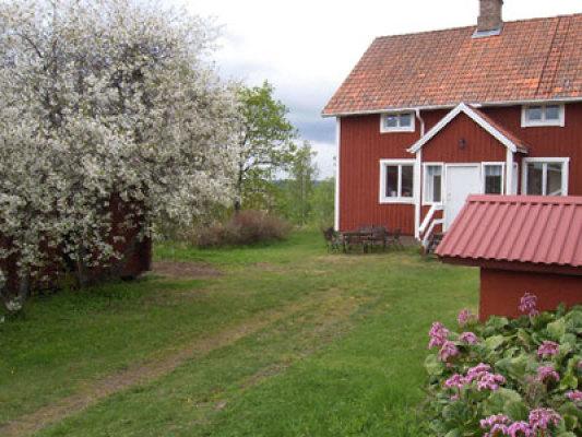 Övrig - gården på sommaren