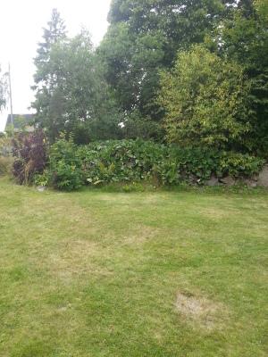 Utomhus - Underbar omgivning runt trädgården