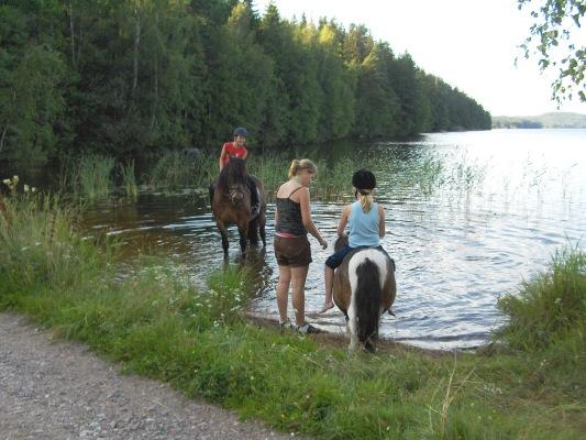 Utomhus - Möjlighet att rida ponny och häst. ta en dopp i sjö Tången!