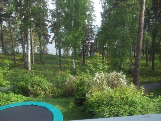 Terrass - vy från balkongen med närheten till Södergarnsviken. Studsmatta i trädgården. Lidingöloppspåret nedanför för jobb eller promenader.