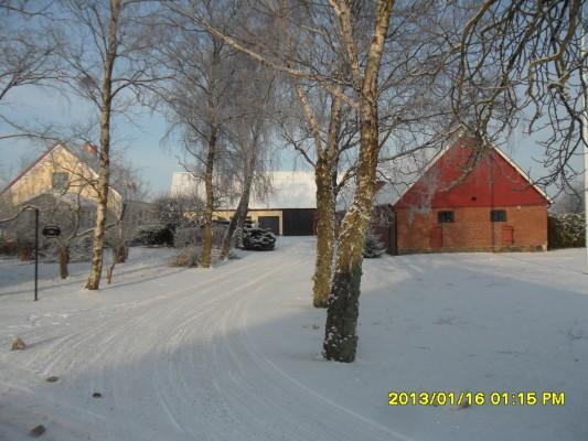 På vintern - Vinter på Ängbo Gård