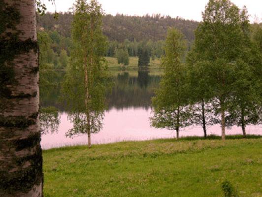 Övrig - vid sjön
