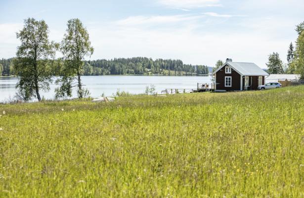 Utomhus - Innersta Friden
