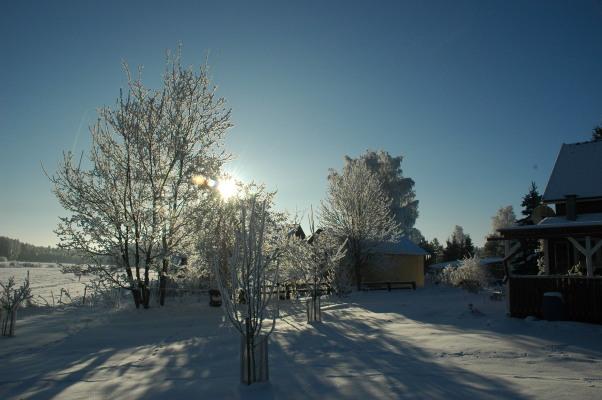 På vintern - Utsikt över den härliga naturen
