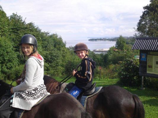 Övrig - hästgård med islandshästar ligger 500m från torpet.