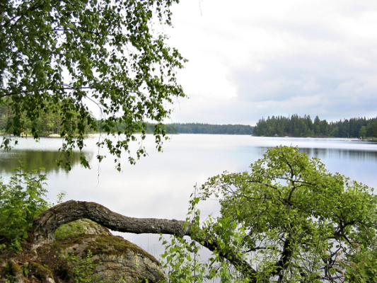 på sommaren - sjön där det finns en liten båt