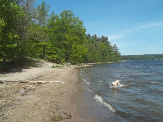 på sommaren - Många naturstränder att njuta av