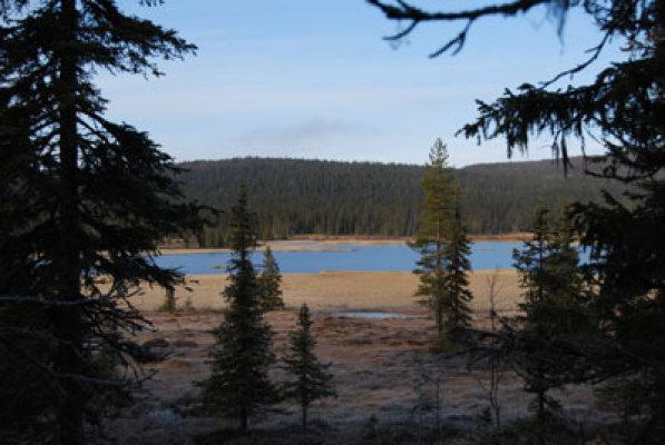 Övrig - fjällsjön