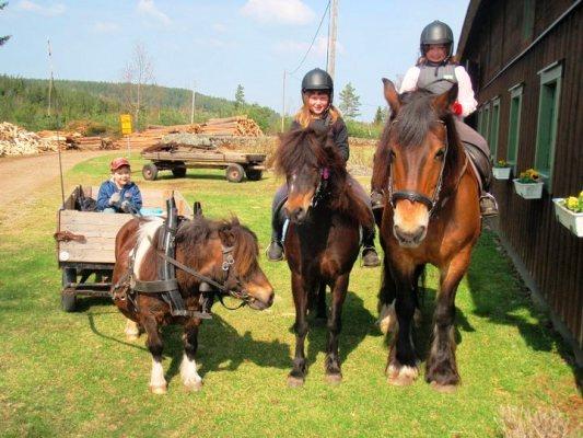 Utomhus - Möjlighet att rida ponny och häst.