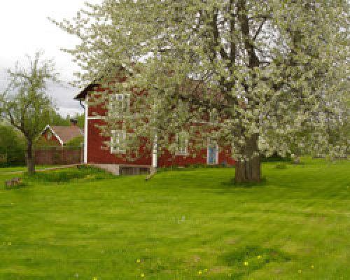 Övrig - Vägens gård