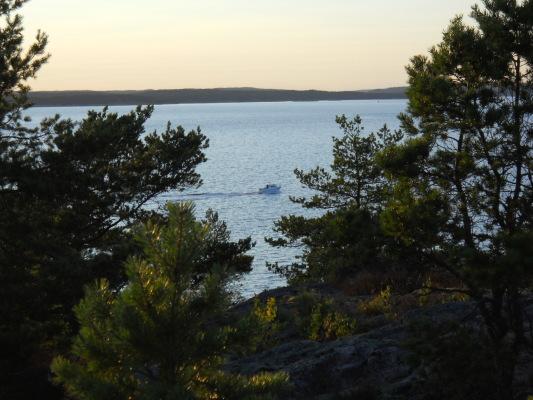 på sommaren - Utsikt från stugan