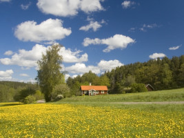 Beautiful holiday cottages and apartments in Sweden - Welcome at Tripto!
