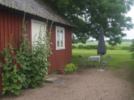 På sommaren - Stugans uteplats med vy över åkrarna i öster.